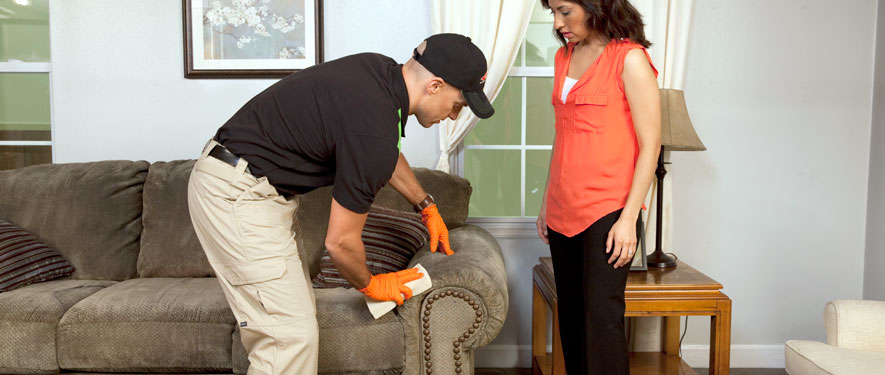Idaho Falls, ID carpet upholstery cleaning